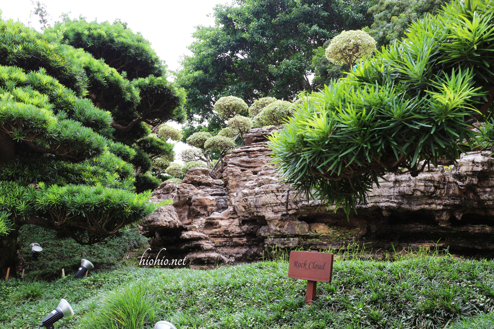 Nan Lian Gardens Hong Kong- Rocks and greenery.