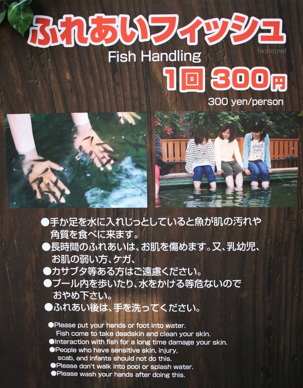 Kobe Animal Kingdom Japan Hyogo (Doctor Fish area).
