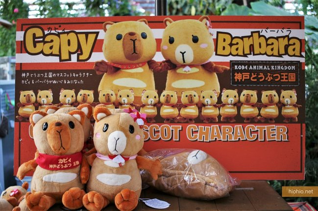 Kobe Animal Kingdom Japan (Capybara Plushie Cute Mascot)